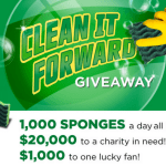Instantly Win 1 of 31,000 Libman Sponges (I WON!!)