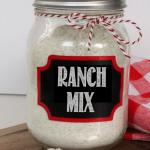 Copycat Hidden Valley Ranch Mix