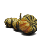 *HOT* Lowe's: Pumpkins Only $1.00 (Order Online Now!)