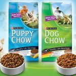 *HOT* Buy 1 Purina Dog or Puppy Chow, Get 1 FREE ($6.50 VALUE) Coupon