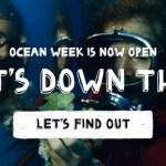 Google: FREE 4-Week Online Summer Camp!