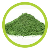Rain_Core_Chlorella
