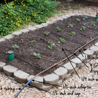 Watering: Drip Irrigation