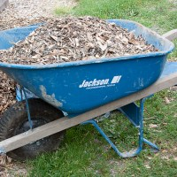 Thrifty Gardening Tip: Free Wood Chips!