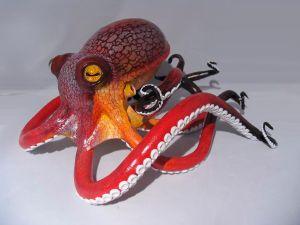 Cara Beven Octopus jpeg