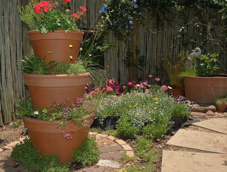 5 Of Our Best Small Garden Ideas With Indigenous Plants Of