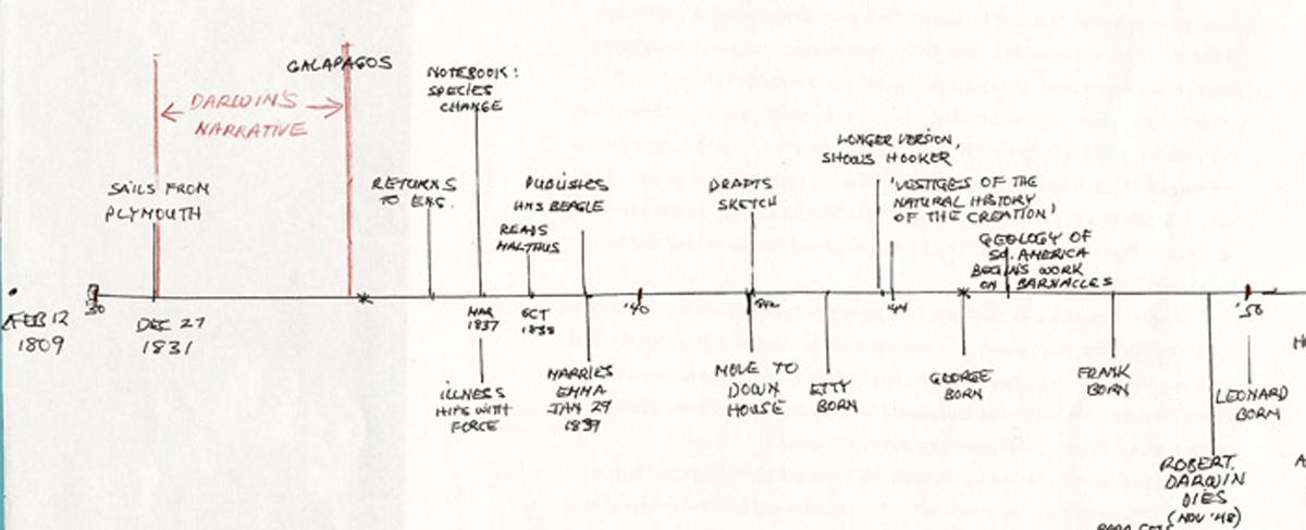 Sample Timelines Simple Timeline Template A Sample From The - simple timeline template