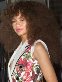 Zendaya Coleman Slips a Nip on the Met Gala Red Carpet