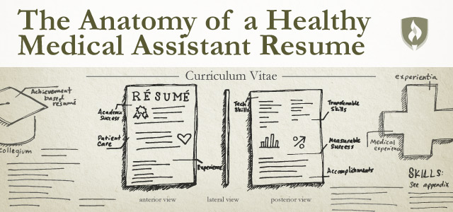 The Anatomy of a Healthy Medical Assistant Resume Rasmussen College
