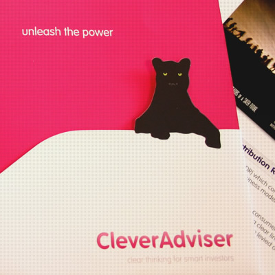 clever_adviser
