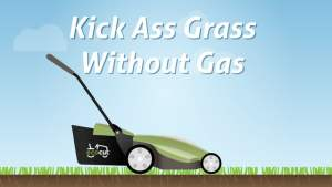 eco cut lawns grass cutting