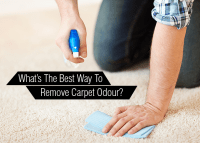 Whats The Best Way To Remove Carpet Odour? | Royal ...
