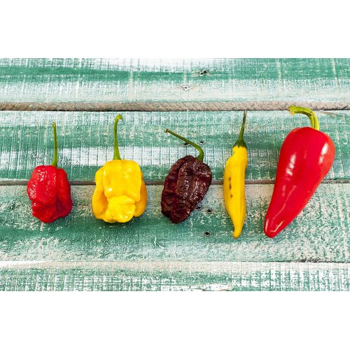 Medium Crop Of Pepper X Scoville