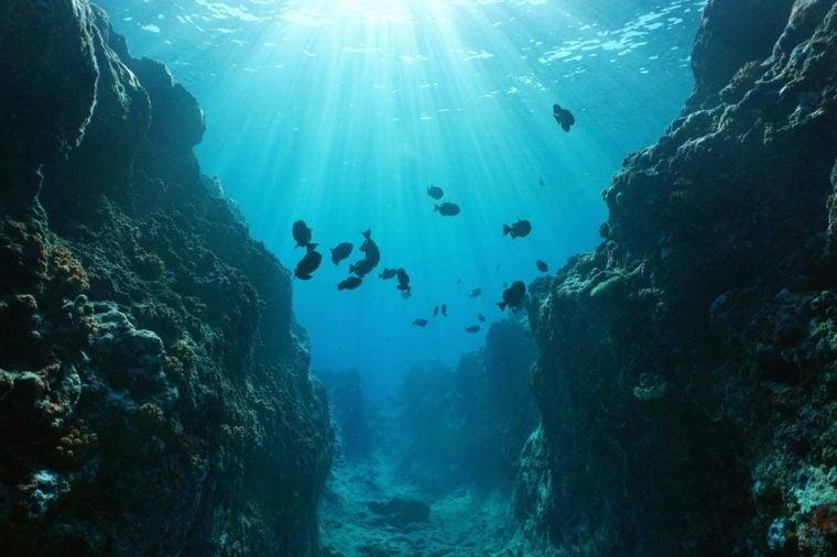 Ocean Mysteries Scientists Still Can\u0027t Explain Reader\u0027s Digest