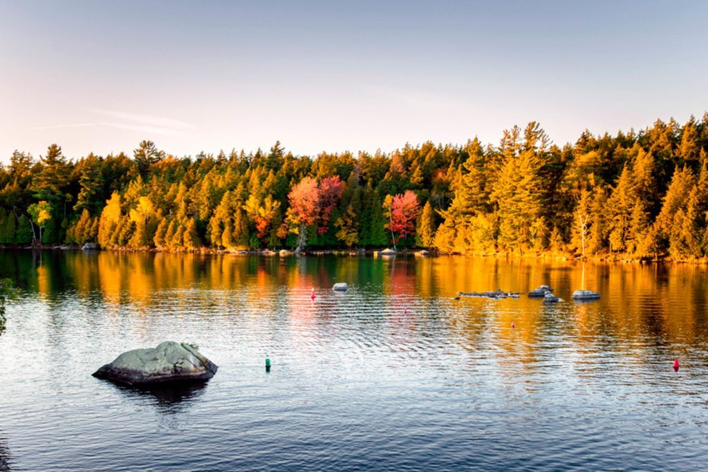 Vermont Fall Foliage Wallpaper 11 Best Road Trips To See Stunning Fall Foliage Reader S