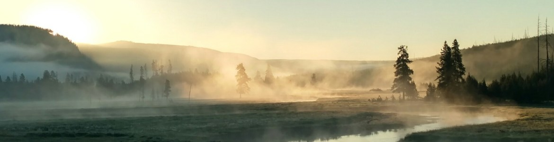 Morning in Yellowstone.