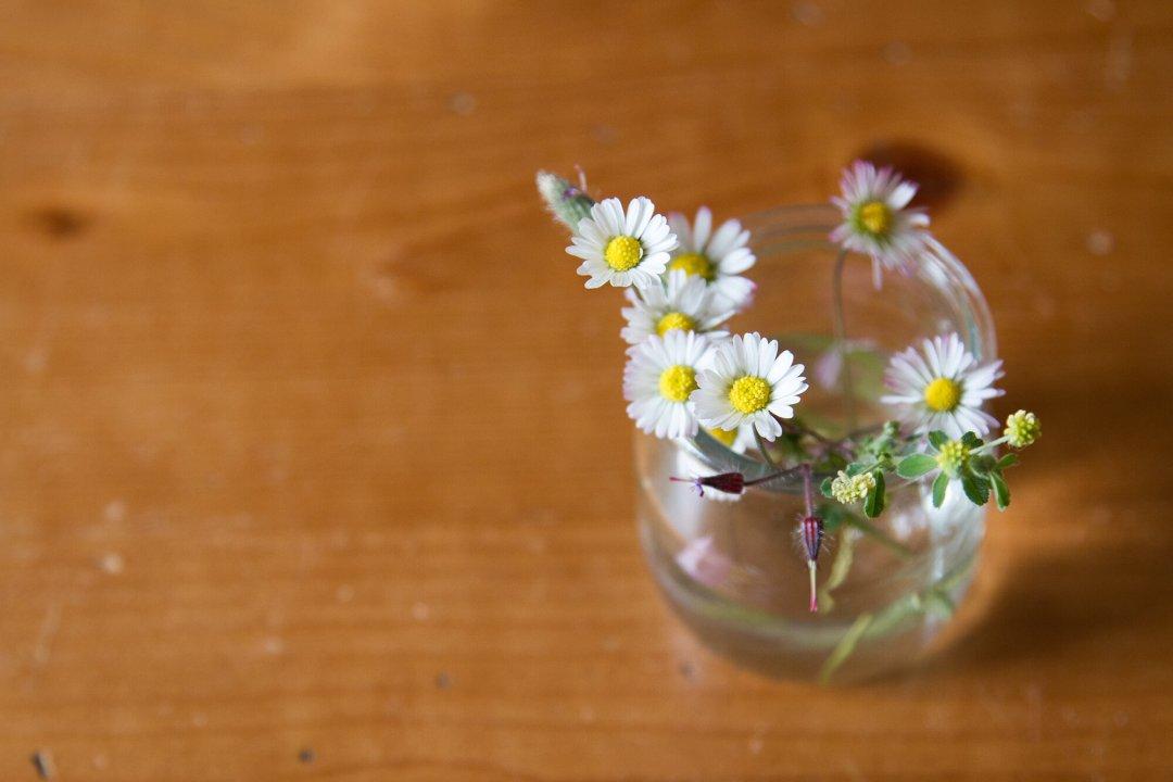yogurt_jar_reading_my_tea_leaves_IMG_1189