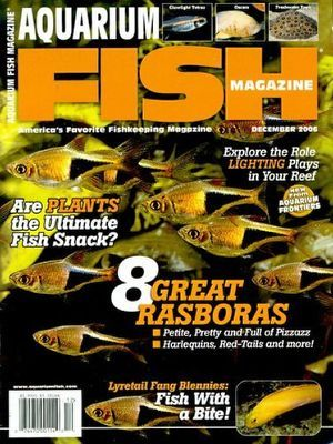 fish magazine subscription click here to view complete magazine