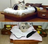 Luxury pet beds - realestate.com.au