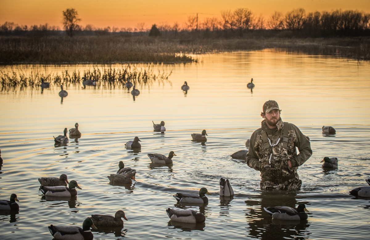 Fall Hunting Wallpaper Morning Or Evening Which Shift Kills More Ducks