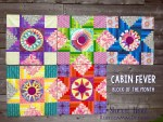 Cabin Fever Block of the Month Quilt #5