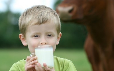 Milk-Dairy-are-they-Healthy