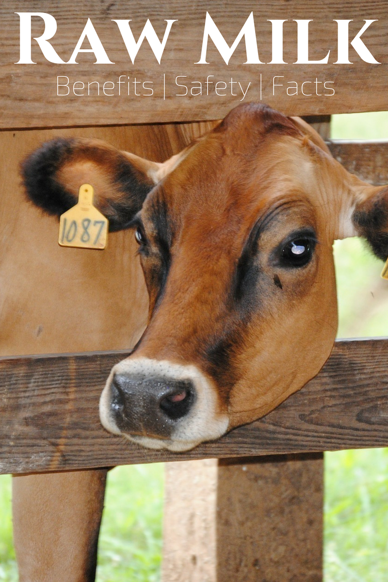 Raw Milk - Benefits, Safety and Facts