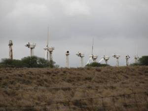 Komoa Wind Farm in Kona, Hawaii June 2010; Friends of Grand Ronde Valley.