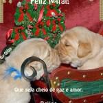 Recado Facebook Natal cheio de paz e amor