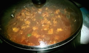 chicken manchurian 13