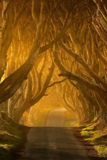 keto ciemno w Irlandii Północnej