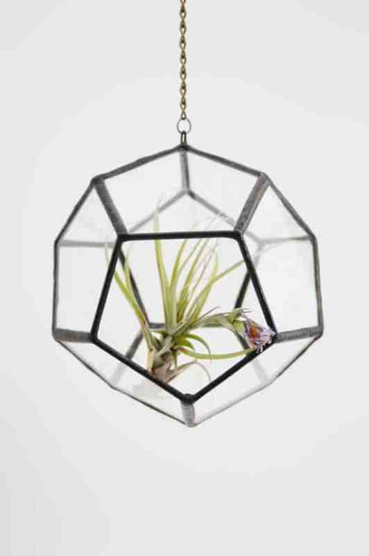 il 570xN.322510101 532x800 Recycled glass Terrarium in glass accessories  with terrarium Recycled Glass