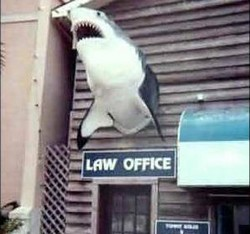 lawyerjokes2 small Lawyer jokes