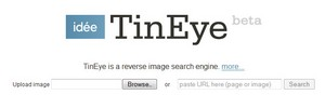 tineye small TinEye   cool free reverse image search engine really works