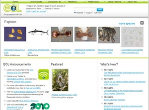 encyclopediaoflife small1 Encyclopedia of Life   an electronic page for every species on earth