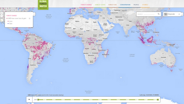 globalforestwatch Global Forest Watch   keeping track of our dwindling flora and fauna one pixel at a time