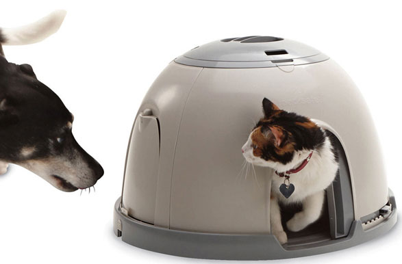 petsafefeedingstation PetSafe Feeding Station   a safe cosy cafe for your small pets and their dinner