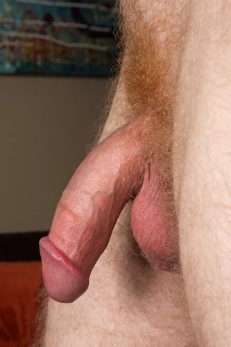 redhead-pubes