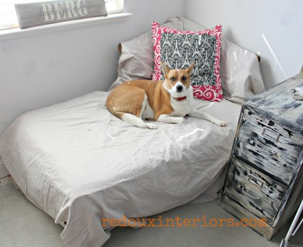 Dog on curbside chaise lounge redouxinteriors
