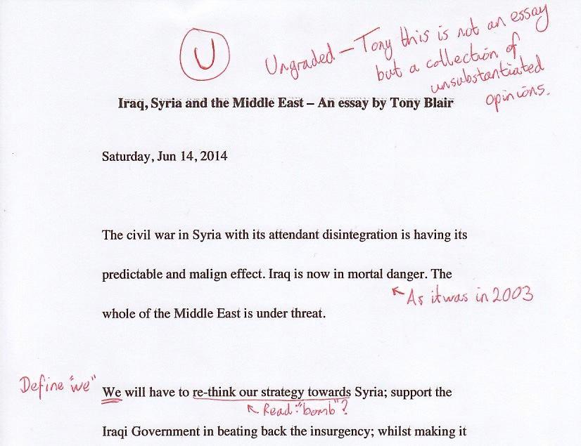 Writing academic essays examples - Academic Essays  Writing