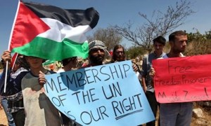 Palestinian UN membership