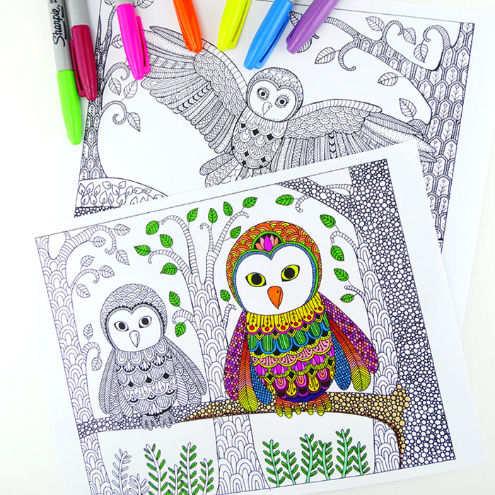 Owl Colouring Pages for Grown Ups - Red Ted Art\u0027s Blog