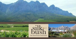 h-silkbush-wines-about-1