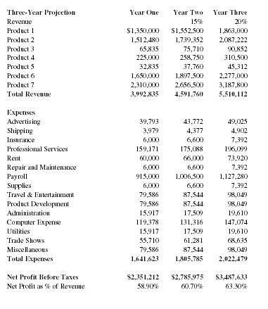 Internet Software Company Business Plan - Executive summary - software business plan template