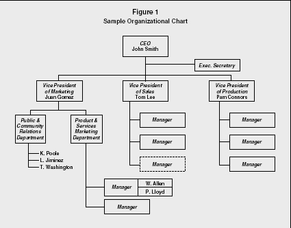 Organizational Chart - strategy, levels, examples, manager, type