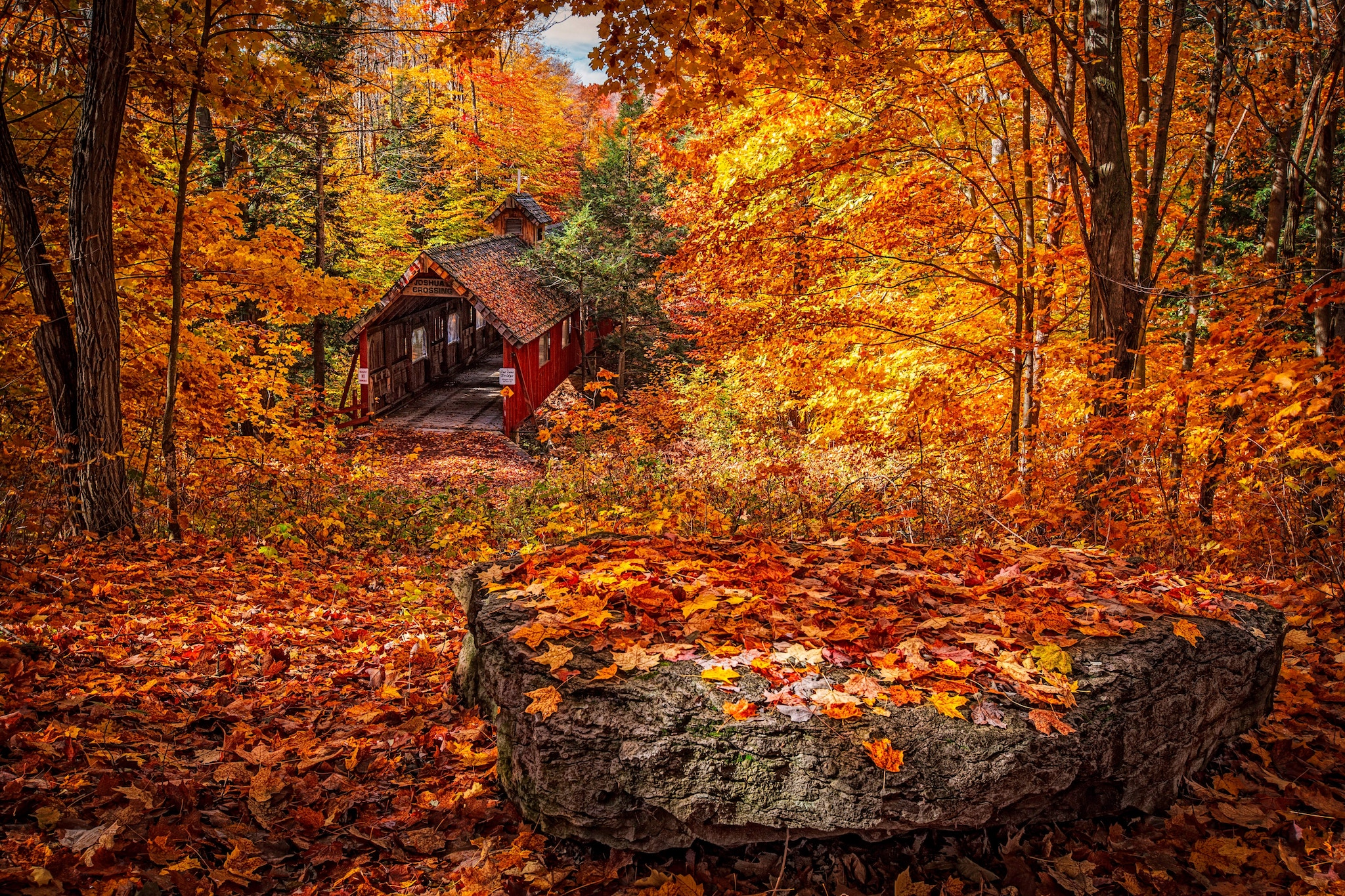 Falling Leaves Wallpaper Screensavers Where To Go For The Best Autumn Foliage By Flight Centre