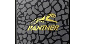 Apacer AS340 PANTHER SSD 01-LOW