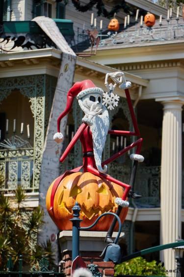Disneyland Anaheim 2