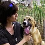 Animal Hope Bulgaria – Es gibt gute Gründe, ein Straßentier aus dem Ausland zu adoptieren