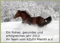 Reiterferien und Reitkurse im Westerwald 2012 | Reiturlaub ...